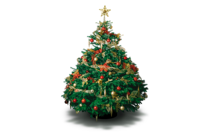 Christmas%20tree%20care%20and%20decoration%20tips.jpg
