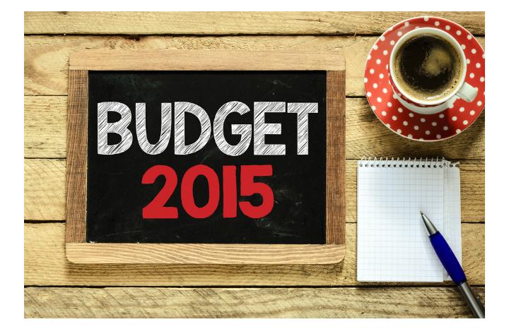 budget2015.jpg