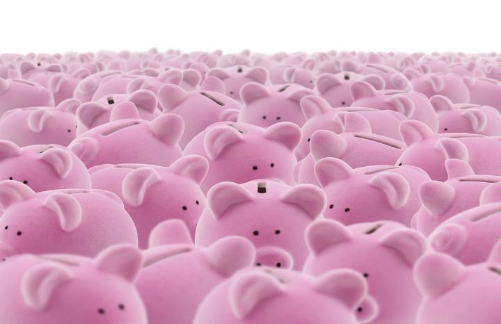 shutterstock_pigs.jpg
