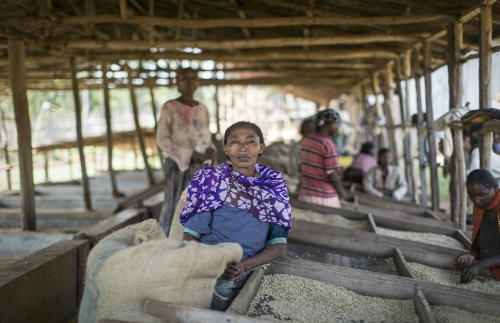 Fairtrade_2016_Ethiopia-0186.jpg