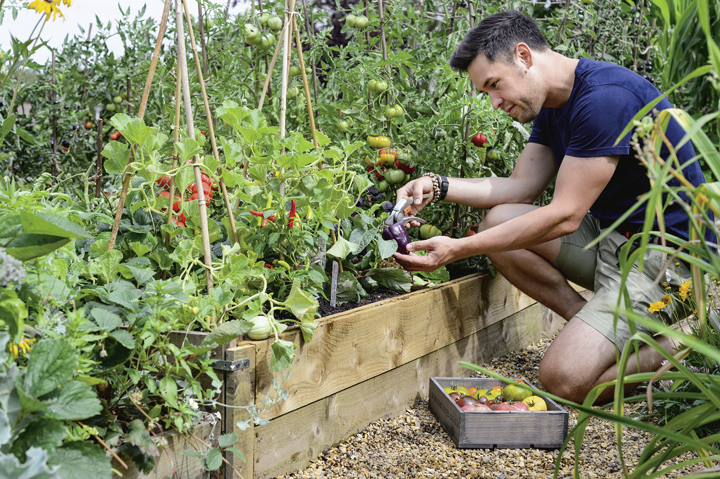 PFISKARSg-49-James-kneeling-with-Tomatoes.jpg