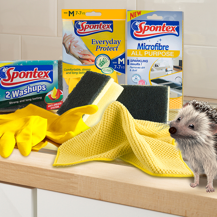 Cleaning-Kit-in-Kitchen-with-Hog-Landscape.jpg