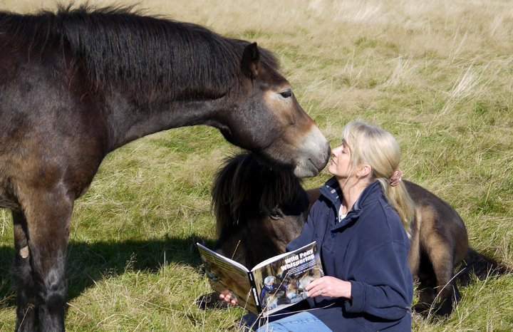 meet the wild pony whisperer yours