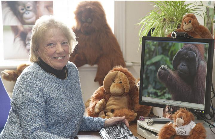 Orangutans%20Patrick%20Boyd%20web.jpg