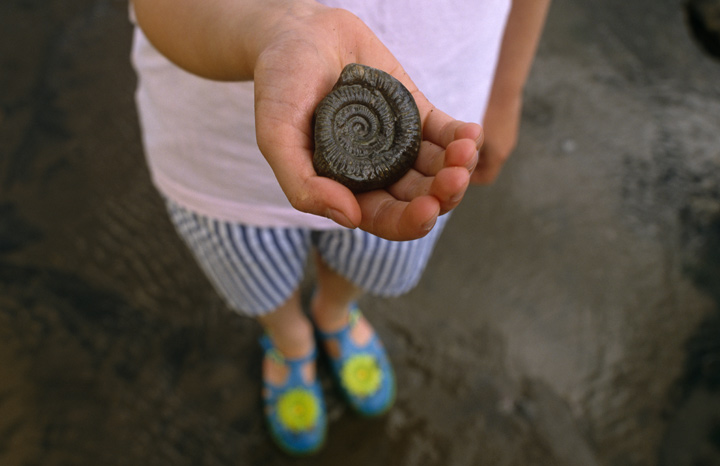 A-child-holding-a-fossil,-on-a-beach-in-Yorkshire-%C2%A9National-Trust-Images-Ian-Shaw.jpg