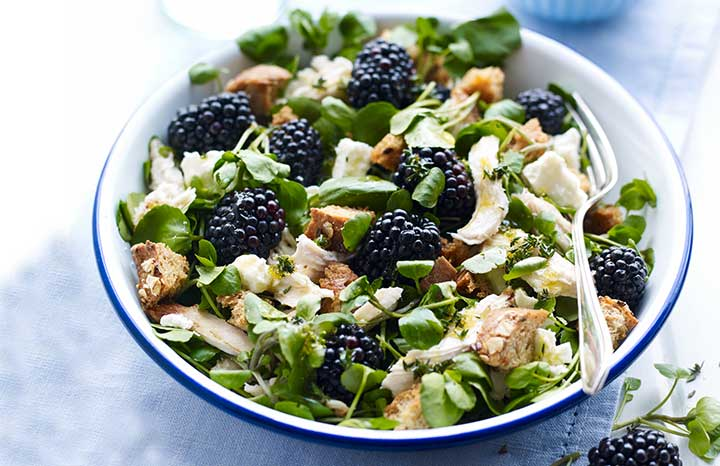BerryWorld-Chicken-and-Blackberry-Salad.jpg