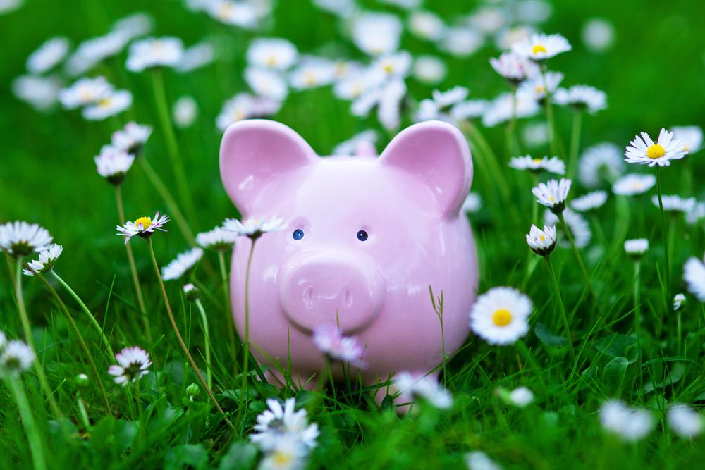 spring_clean_money