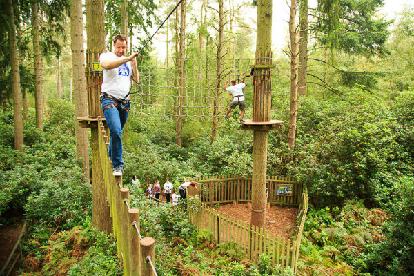 Review Of Go Ape In Thetford Forest Yours