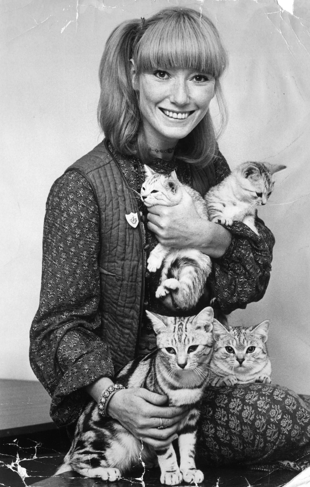 Kittens Jack and Jill having a cuddle with presenter Lesley Judd