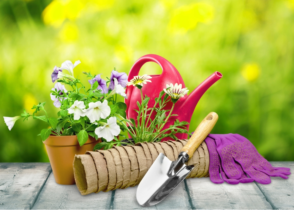garden_budget