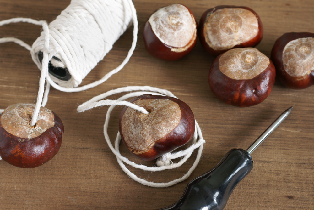 conkers-string