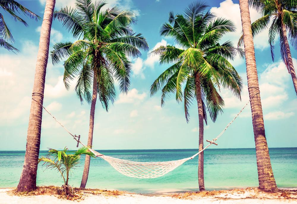 beach-holiday-hammock