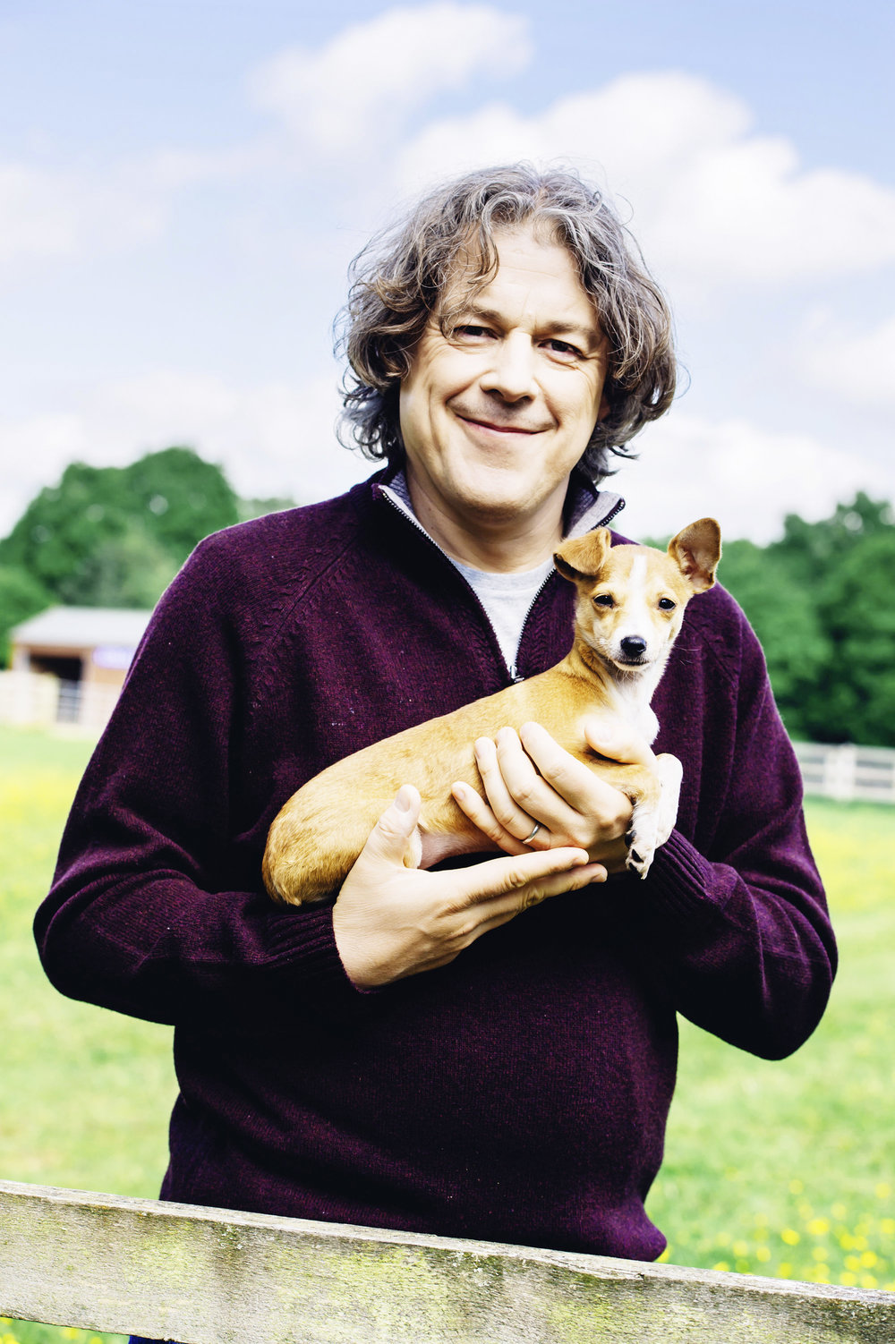 the-return-of-the-dog-rescuers-with-alan-davies