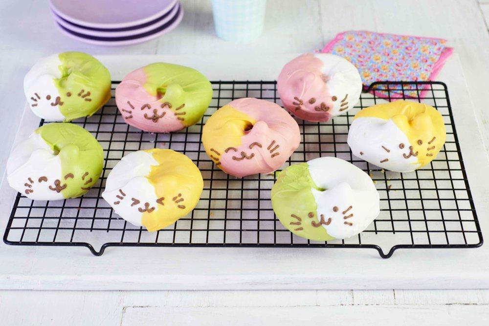 cat-face-doughnuts