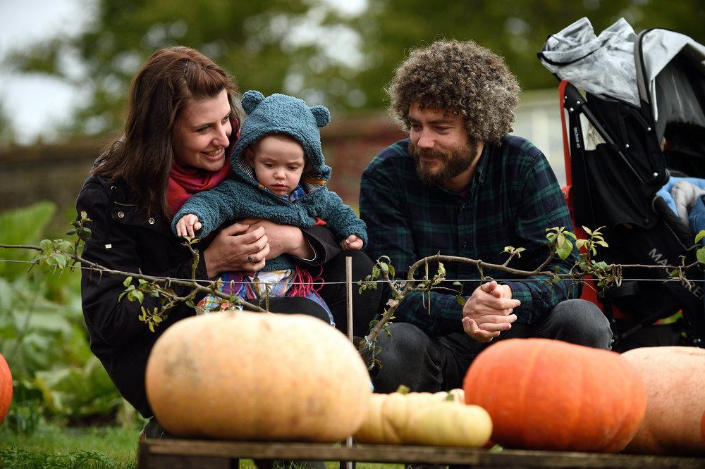 1201889 Autumn fest National Trust Images John Millar.jpg