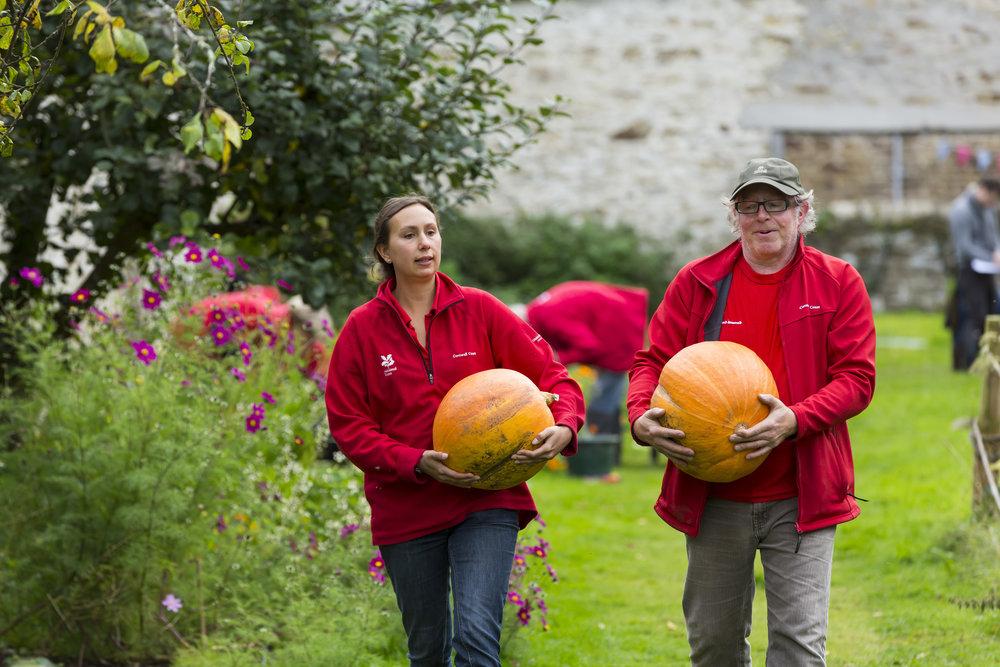 Autumn fest National Trust Images Chris Lacey.jpg
