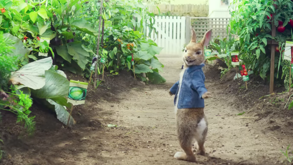 peter-rabbit-movie.png