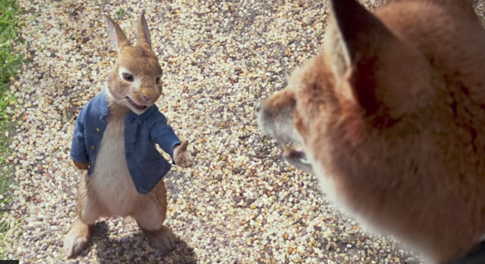 peter-rabbit-fox.png