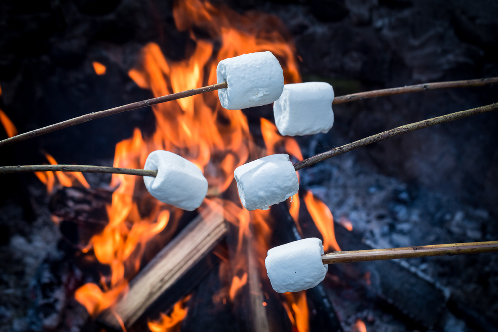 marshmallows-fire.jpg