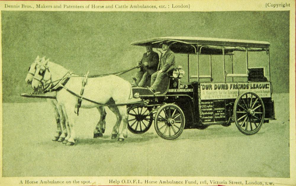 Early-horse-ambulance.jpg