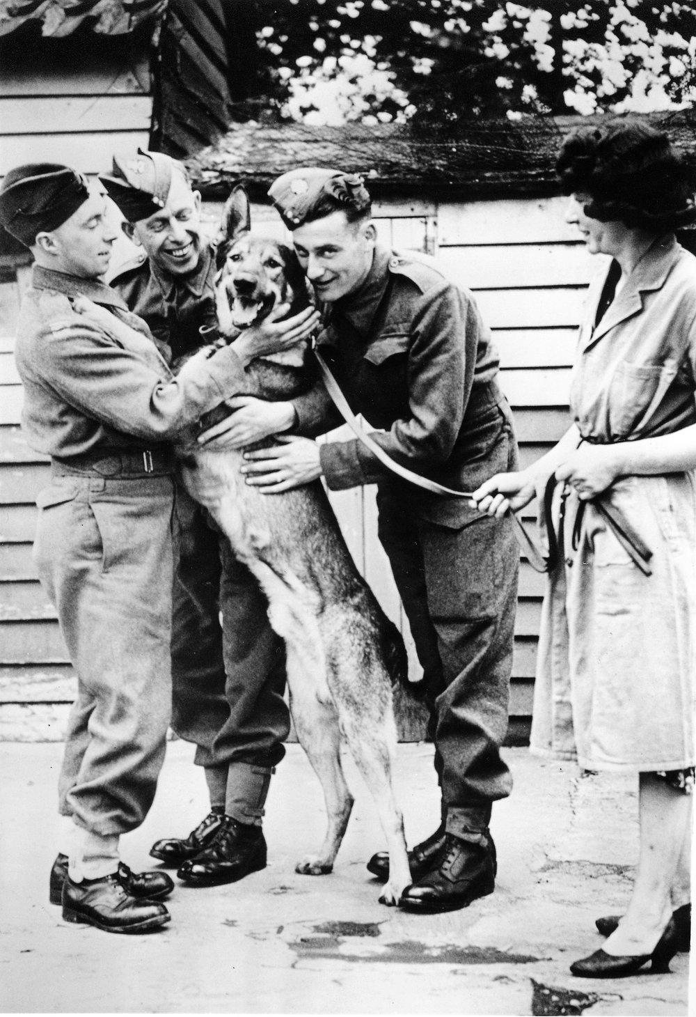 Soldiers-greet-dog.jpg