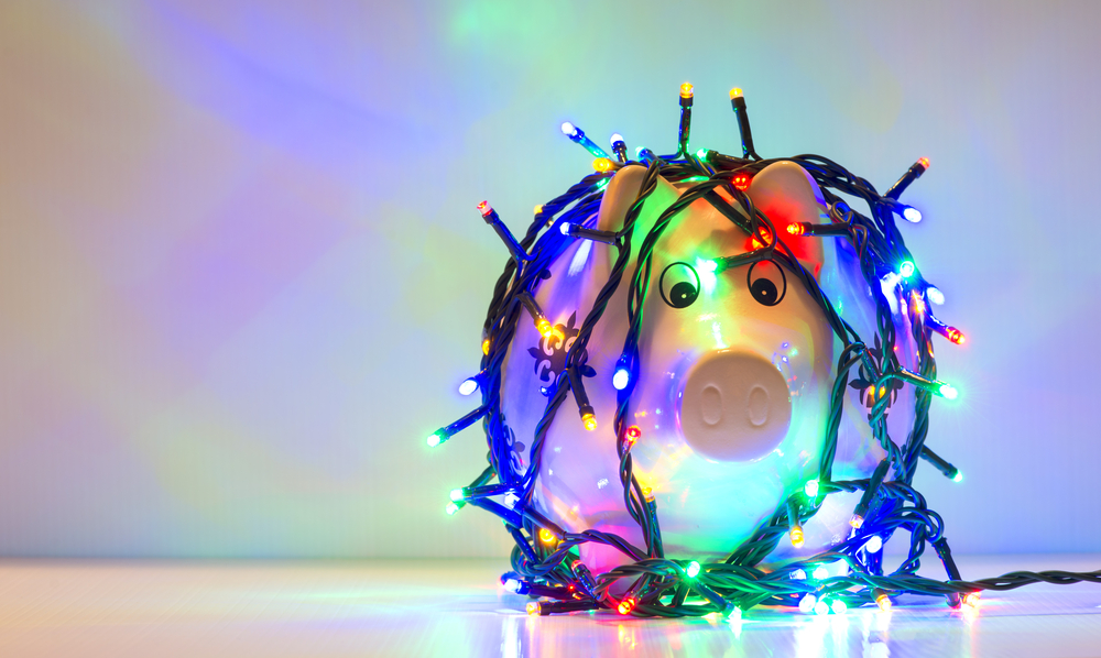 Christmas pig lights.jpg