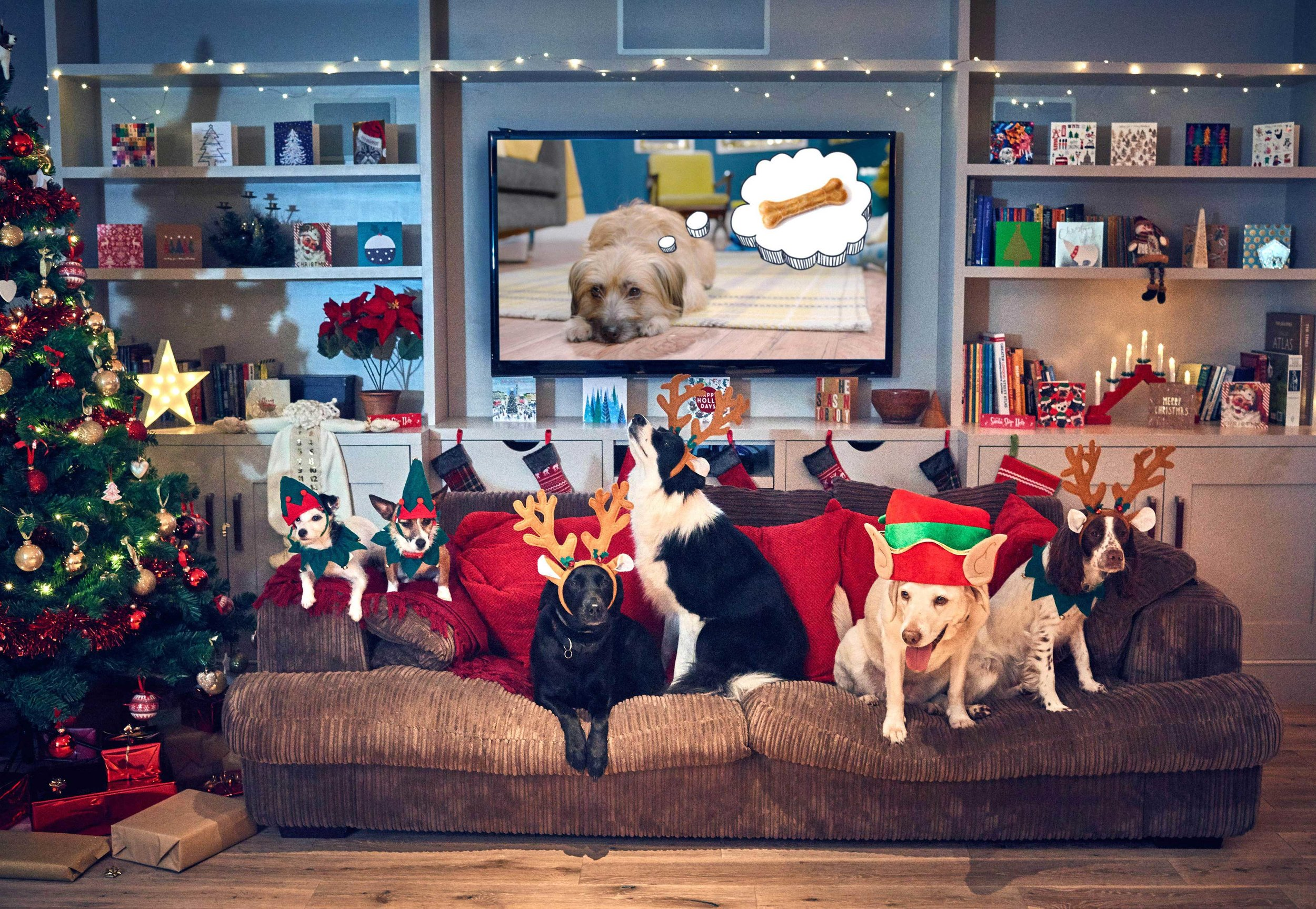 merry woofmas a christmas film for dogs - Christmas Tv