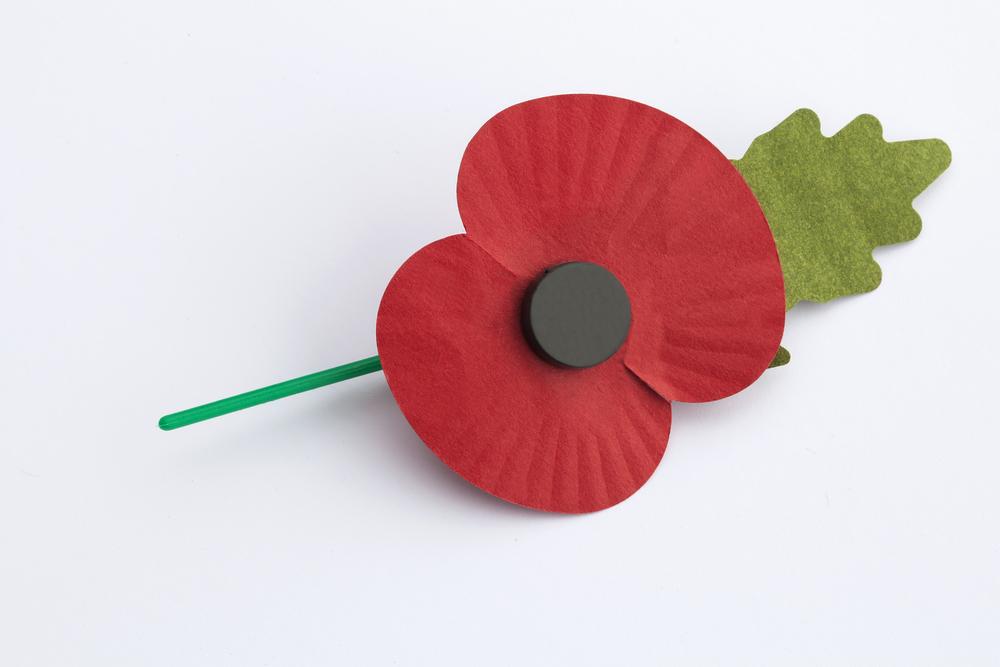 poppy Coventry ISA.jpg