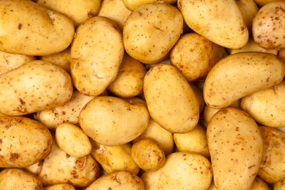 jersey-royal-potatoes