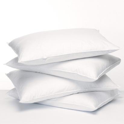 featherfresh-allergy-pillow.jpg