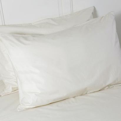 main_Natural_Pillow_Protector.jpg