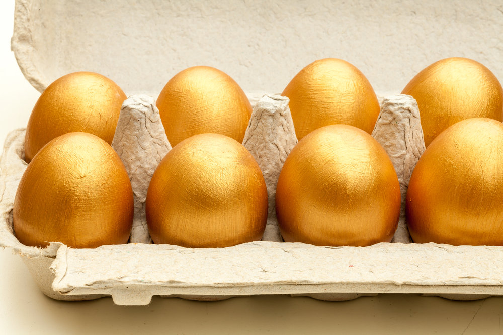 golden eggs pension.jpg