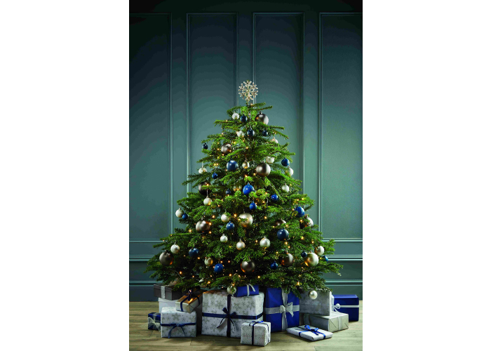 deck the halls with aldi 39 s specialbuys christmas trees and. Black Bedroom Furniture Sets. Home Design Ideas