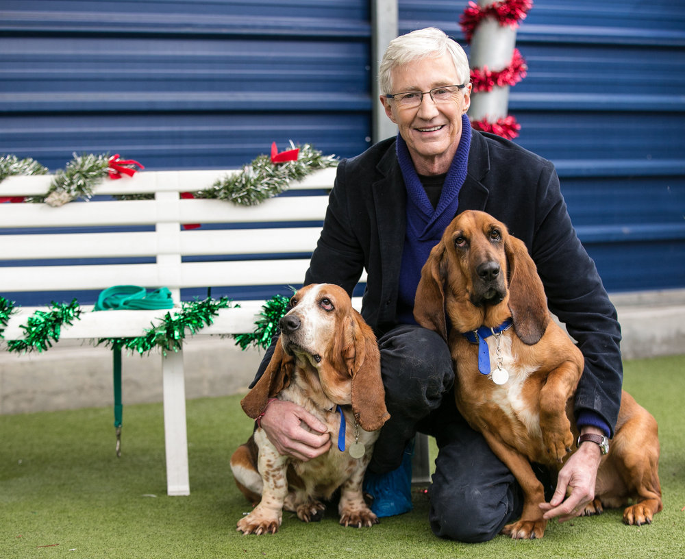 ITV PAUL_OGRADY_LOVE_OF_DOGS_CHRISTMAS_03.jpg