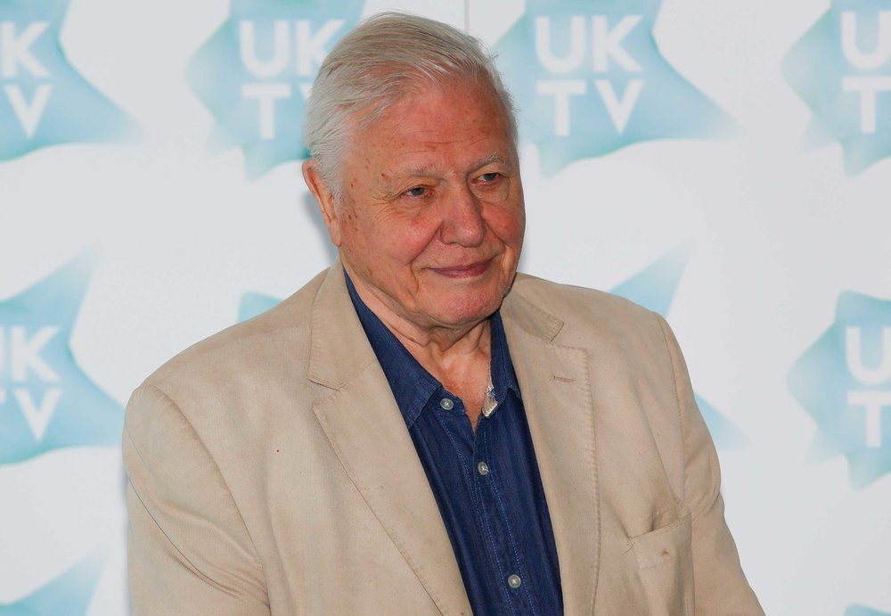David-Attenborough-Dynasty.jpg