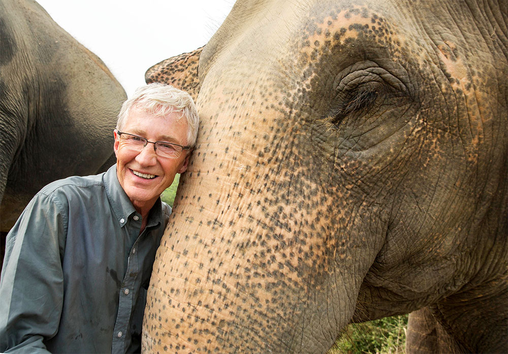 paul-ogrady-elephant.jpeg