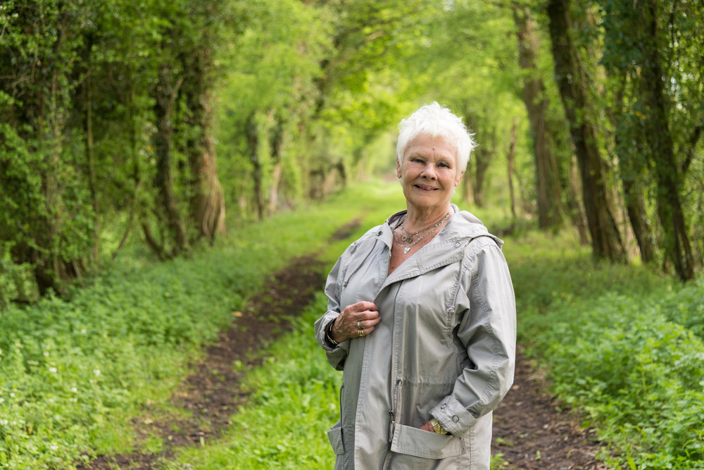 judi-dench-countryside.jpg