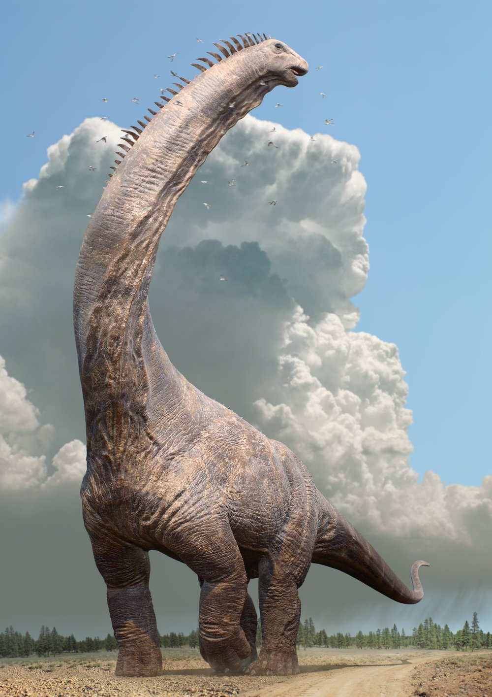 Dinosaurs in the Wild reveal a female Alamosaurus.jpg