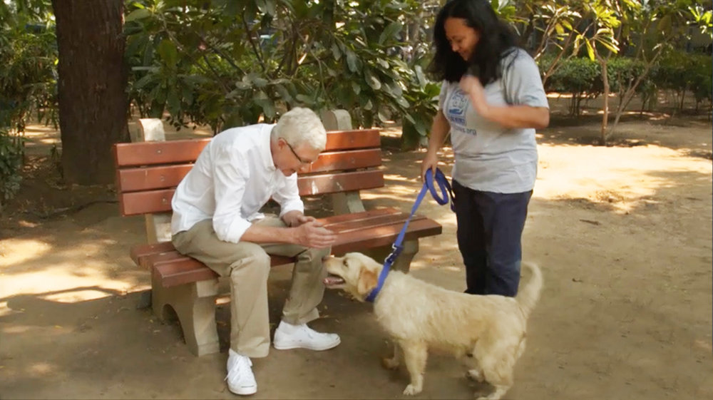 for-the-love-of-dogs-india-paul-ogrady.jpg