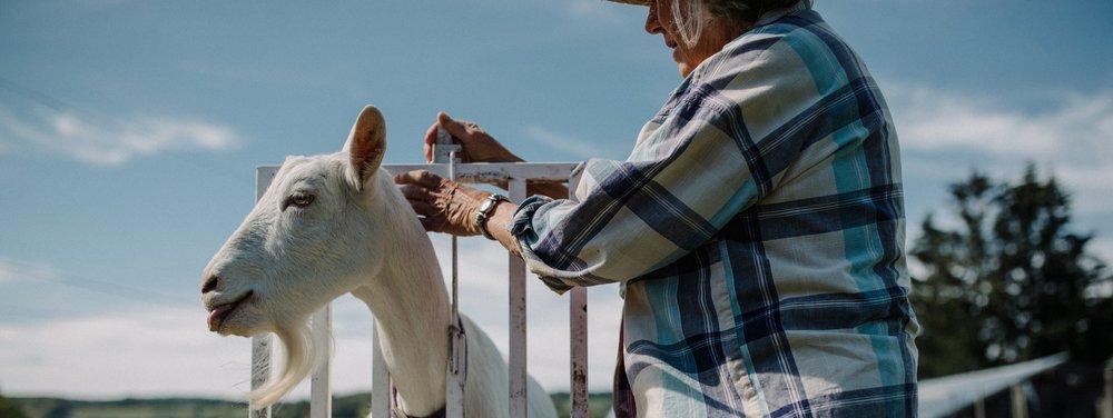 SCVA-Apple-Pond-Farm-September17-LWRNCBRN-DIGITAL-0024.jpg