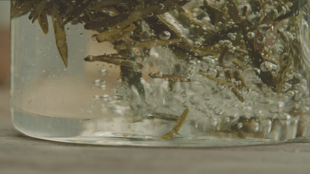 Basao Film Stills-104.jpg