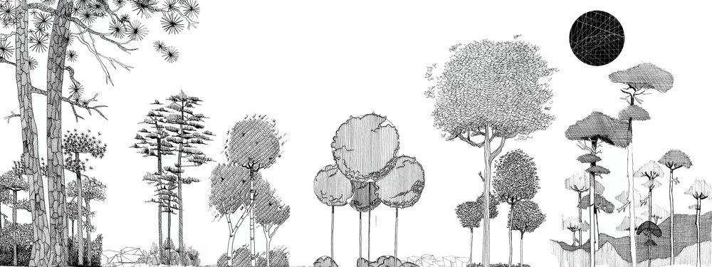 landscape overlay 2.jpg