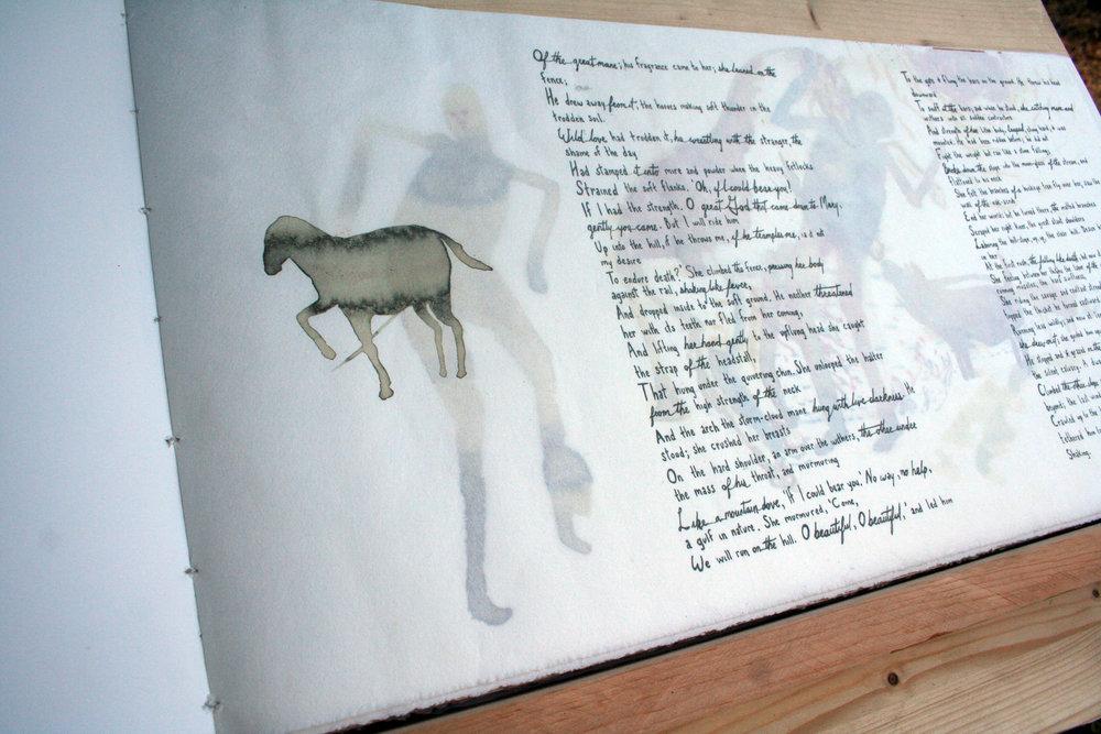 "Artist's Book ""Infidelity"""