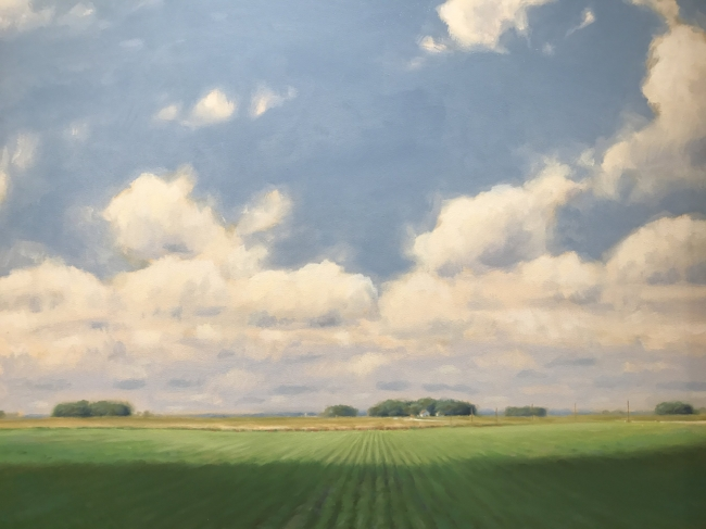 Summer, the Field