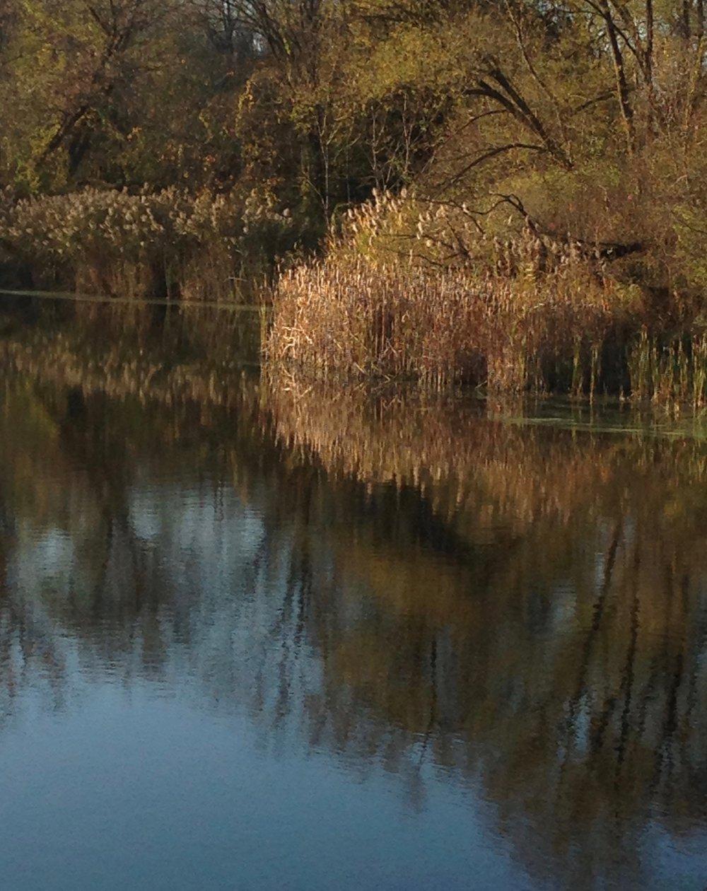 Reflection&Reflexion3.jpg