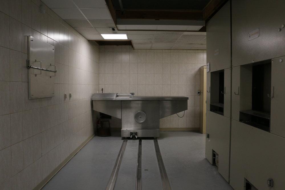 crematorium animaux
