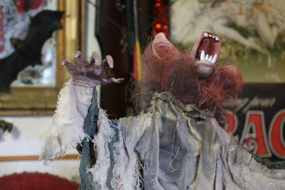musee-vampire-dracula-paris