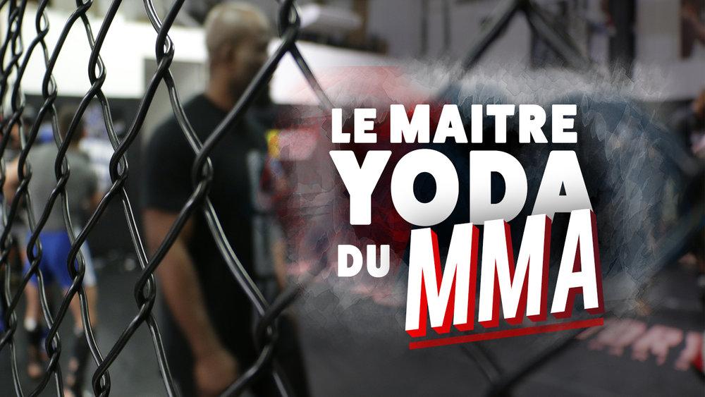 LA FABRIQUE A CHAMPIONS DU MMA