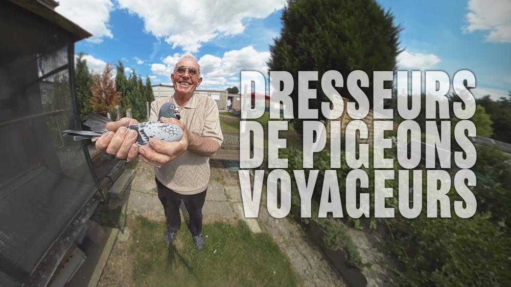 DRESSEURS DE PIGEONS VOYAGEURS