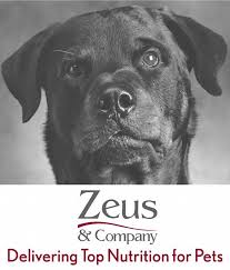 Zeus _ Co. Logo.jpg
